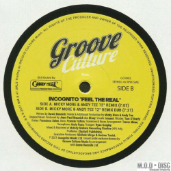 Incognito – Feel The Real (Micky More & Andy Tee Remix) 12' vinyl